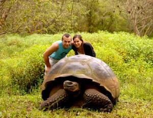 liv lach turtle